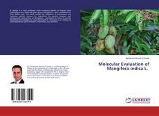 Portada del libro de Molecular Evaluation of Mangifera indica L.