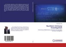 Bookcover of Numbers Intricacy Investigation