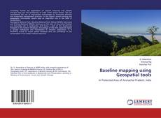 Copertina di Baseline mapping using Geospatial tools