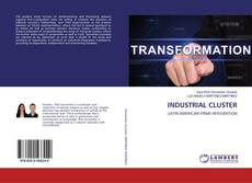 Bookcover of INDUSTRIAL CLUSTER