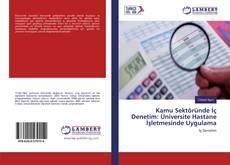 Kamu Sektöründe İç Denetim: Üniversite Hastane İşletmesinde Uygulama kitap kapağı