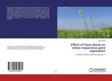 Обложка Effect of heat shock on stress responsive gene expression
