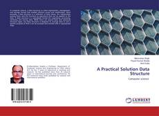 Bookcover of A Practical Solution Data Structure
