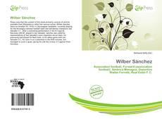 Capa do livro de Wilber Sánchez
