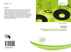 Bookcover of WEZB
