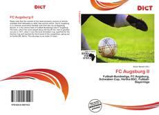 Capa do livro de FC Augsburg II