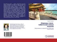 Народы сино-тибетской семьи языков kitap kapağı