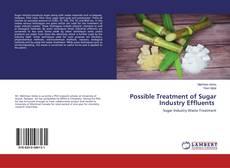 Possible Treatment of Sugar Industry Effluents kitap kapağı