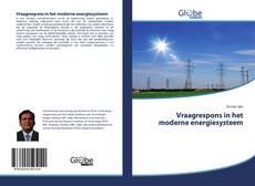 Vraagrespons in het moderne energiesysteem kitap kapağı
