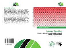 Bookcover of Labour Coalition