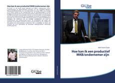 Bookcover of Hoe kan ik een productief MKB/ondernemer zijn