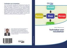 Bookcover of Technieken voor risicobeheer