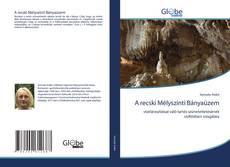 Bookcover of A recski Mélyszinti Bányaüzem