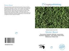 Capa do livro de Néstor Rossi