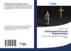 Buchcover von Börtönpasztoráció a mai Magyarországon