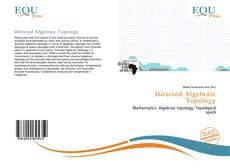 Buchcover von Directed Algebraic Topology