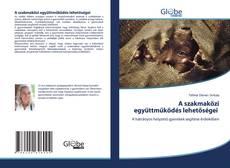 Bookcover of A szakmaközi együttműködés lehetőségei