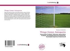 Thiago Gomes Antequeira的封面