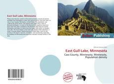 Copertina di East Gull Lake, Minnesota