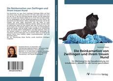 Die Reinkarnation von Zwillingen und ihrem treuen Hund的封面