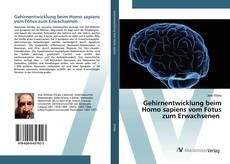 Copertina di Gehirnentwicklung beim Homo sapiens vom Fötus zum Erwachsenen