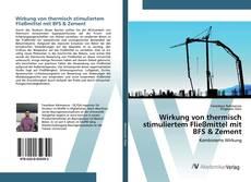 Обложка Wirkung von thermisch stimuliertem Fließmittel mit BFS & Zement