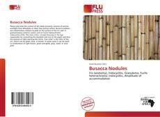 Busacca Nodules kitap kapağı
