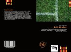 Capa do livro de Saúl Sánchez