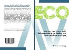 Narben der Wirtschaft: Schwermetalle im Boden von industriellem Mariupol kitap kapağı