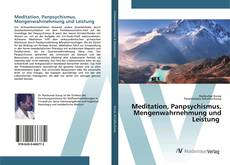 Buchcover von Meditation, Panpsychismus, Mengenwahrnehmung und Leistung