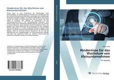 Buchcover von Hindernisse für das Wachstum von Kleinunternehmen