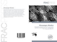 Bookcover of Oluwasegun Abiodun