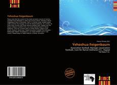 Capa do livro de Yehoshua Feigenbaum