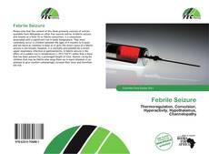 Bookcover of Febrile Seizure