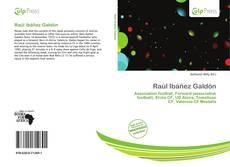 Bookcover of Raúl Ibáñez Galdón