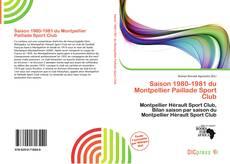 Bookcover of Saison 1980-1981 du Montpellier Paillade Sport Club