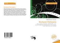 Bookcover of Richard Pellejero