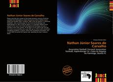 Bookcover of Nathan Júnior Soares de Carvalho