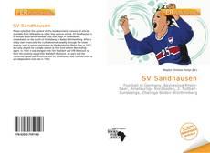 SV Sandhausen kitap kapağı