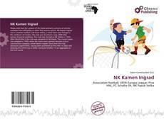 Capa do livro de NK Kamen Ingrad