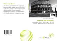 Wife of Julius Nepos kitap kapağı