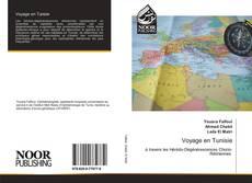 Bookcover of Voyage en Tunisie