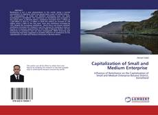 Bookcover of Capitalization of Small and Medium Enterprise