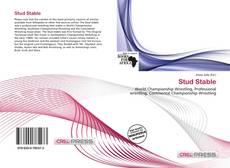 Capa do livro de Stud Stable