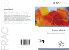 Bookcover of Iminoglycinuria