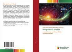 Bookcover of Perspectivas críticas