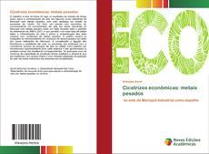Bookcover of Cicatrizes econômicas: metais pesados