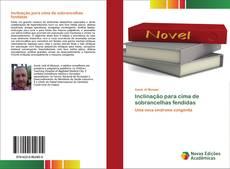 Capa do livro de Inclinação para cima de sobrancelhas fendidas