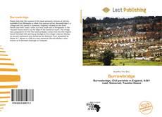 Burrowbridge kitap kapağı