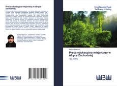 Bookcover of Praca edukacyjna misjonarzy w Afryce Zachodniej